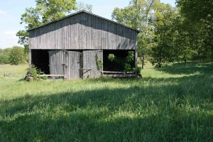 Real Estate & Farm Liquidation Auction @ White Pine | Tennessee | United States
